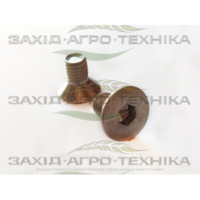 Болт INOX 12х20 - BA12X20TFI