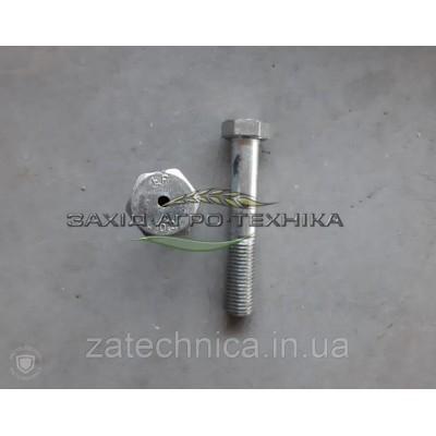 Болт спеціальний М20х120-10,9 - BC-875